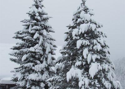 Zimovanje_2018_2_raz (96)