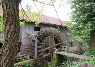Soržev mlin (61)