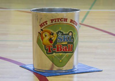 Tee-ball (19)